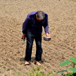 China: Barefoot Farmer Working in Field — Stock Photo
