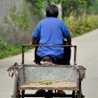 China: Elderly Woman Riding Her Bicycle Cart on a Country Road — Stock Photo