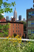 NYC: The Empire State Building seen from the Highline Park — Stock Photo