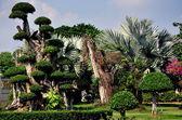 Samut Prakan, Thailand: Wat Asoke Gardens — Stock Photo