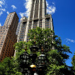 NYC:  The Woolworth Building — Stockfoto