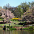 NYC:  Cherry Hill in Central Park — Stock Photo