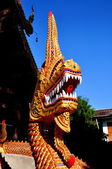 Chiang Mai, Thailand: Naga Dragon at Wat Sum Pao — Stock Photo
