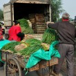 Pengzhou, China: Workers Loading Green Onions onto a Truck — Stock Photo