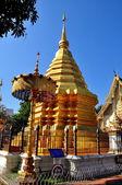 Chiang mai, tailândia: dourada passo chedi em wat chomphu — Foto Stock