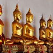 Bangkok,, Thailand:  Gilded Buddhas at Wat Pho — Stock Photo