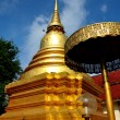 Chiang Mai, Thailand: Golden Chedi at Wat Parpowrai — Stock Photo