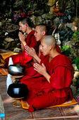 Chiang Mai, Thailand: Monks Praying at Wat Palad — Stock Photo