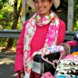 Chiang Mai, Thailand: Thai Woman Selling Clothing and Handicrafts — Stock Photo
