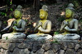 Chiangmai, thailand: drei buddhas am wat palad sitzen — Stockfoto