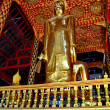 Chiang Mai, Thailand: Standing Buddha at Wat Suan Dok — Stock Photo