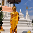 Chiang Mai, Thailand: Standing Buddha at Wat Changkam — Stock Photo