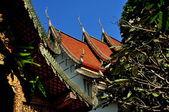Chiang Mai, Thailand: Wat Tha Srikhong Ubosot — Stock Photo