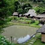Chiang Mai, Thailand: Cluster of Farm Houses at Baan Tang Luan Cultural Village — Stock Photo #36800091