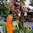 Stockfoto: Chiang Mai, Thailand: Two Teenaged Monks at Wat Chedi Luang