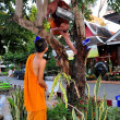 图库照片: Chiang Mai, Thailand: Two Teenaged Monks at Wat Chedi Luang
