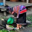 Chiang Mai, Thailand: Woman Washing Greens — Stock Photo