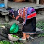 Chiang Mai, Thailand: Woman Washing Greens — Stock Photo #36803799