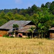 Chiang Mai, Thailand: Hill Tribe Village Farmhouses at Baan Tang Luan Cultural Village — Stock Photo