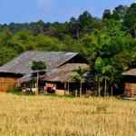 Chiang Mai, Thailand: Hill Tribe Village Farmhouses at Baan Tang Luan Cultural Village — Stock Photo #36806621