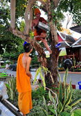 Chiang Mai, Thailand: Two Teenaged Monks at Wat Chedi Luang — Stok fotoğraf