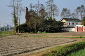 Pengzhou, China: Sichuan Farmhouse and Newly Plowed Fields — Stock Photo