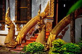 Chiang Mai, Thailand: Naga Dragons at Wat Chiang Mun — Stock Photo