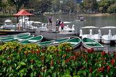 Bangkok, Thailand: Family Renting Duck Pedal Boat in Lumphini Park — Stock Photo