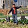 Stock Photo: Pengzhou, China: Farmer Carrying Water Pails
