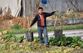 Pengzhou, China: Farmer Carrying Water Pails — Stock Photo
