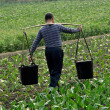 Pengzhou, China: Farmer Carrying Water Buckets — Stock Photo