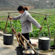 Stock Photo: Pengzhou, China: Womwith Water Buckets
