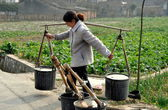 Pengzhou, China: Woman with Water Buckets — Stock Photo