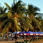 Bang Saen, Thailand: Beach Umbrellas and Palm Trees — Stock Photo