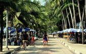 Bang saen, Thaïlande : promenade et des palmiers de la plage — Photo