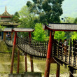 Постер, плакат: Dujiangyan China: An Lan Suspension Bridge