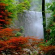 Stock Photo: Guilin, China: Waterfall in Seven Stars Hill Park