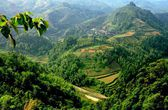 Longsheng, China: Vista over Mountainside Rice Paddies — Stock Photo