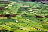 Guan Yin Xia, China: Farmlands with Flooded Rice Paddies — Stock Photo