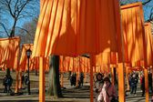 NYC:  Christo's The Gates Art Installation — Stock Photo