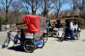 NYC: Tourist Pedicabs at Central Park's Cherry Hill — Stock Photo