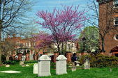 Alexandria, VA: Christ Church Tombstones — Stock Photo