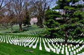 Arlington, VA: Graves at Arlington National Cemetery — Stock Photo