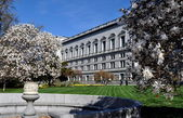 Washington, dc: library of congress — Stockfoto