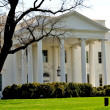 Washington, DC: The White House — Stock Photo