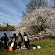 NYC:  Cherry Hill in Central Park — Stock Photo #45152287