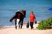 Batu Ferringhi, Malaysia: Men wth Horse on Beach — Stock Photo