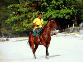 Batu Ferringhi, Malaysia: Malay Man Riding Horse on Beach — Stock Photo