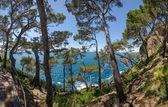 Overview of the coast of Portofino — Stock Photo