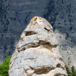 Monolith in Yellowstone — Stock Photo